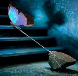 Se détacher dans Méditations papilloncaillou-300x294
