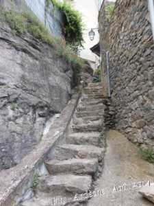 Un Chemin plusieurs voies dans Méditations dscn2147-1-225x300